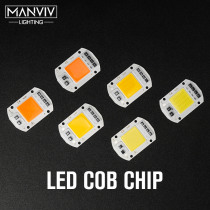 LED COB Chip 20W 30W 50W 220V Smart IC Chip Not Need Driver High Lumens Chip Full Spectrum For DIY Outdoor Floodlight Spotlight