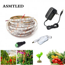 1M 2M 3M 5M LED Grow Lights 5050 LED Strip Light Full Spectrum LED Phyto Lamps Fitolampy With DC 12V Power Adapter Touch Switch